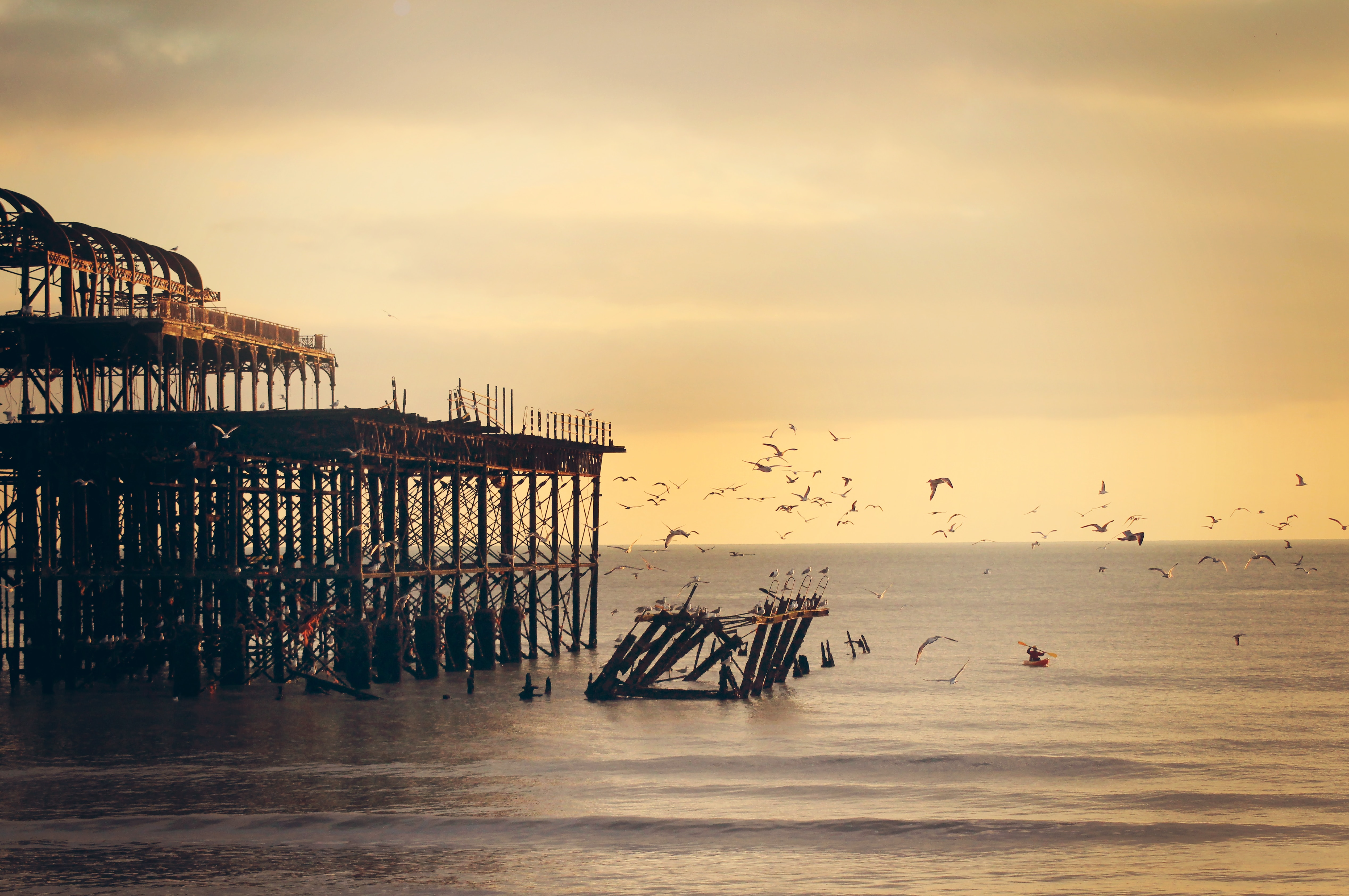 Photo of Brighton West Pier in sunset with seagulls